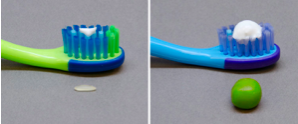demonstration of proper toothpaste amount